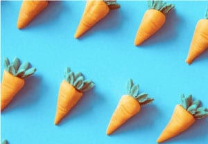 Email deliverability audit - carrots on a blue background