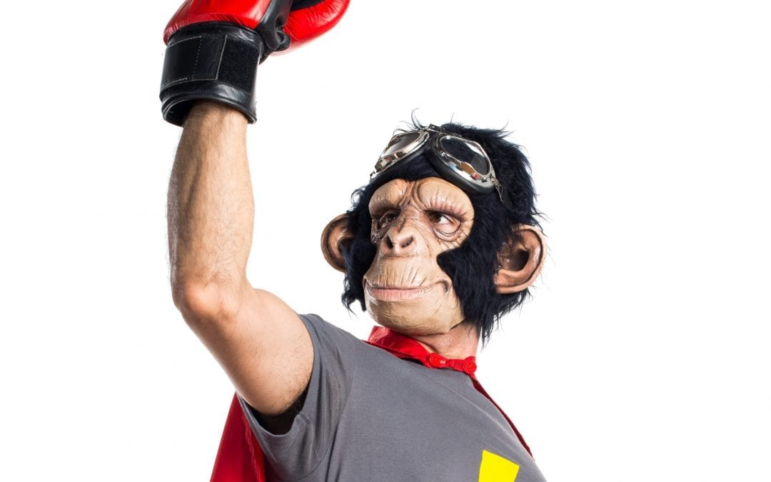 NEW: Mailchimp does more than just email!