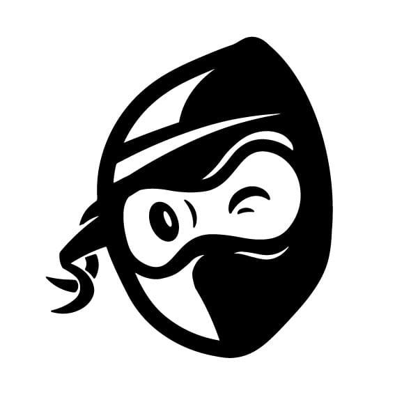 small Mail Ninja logo