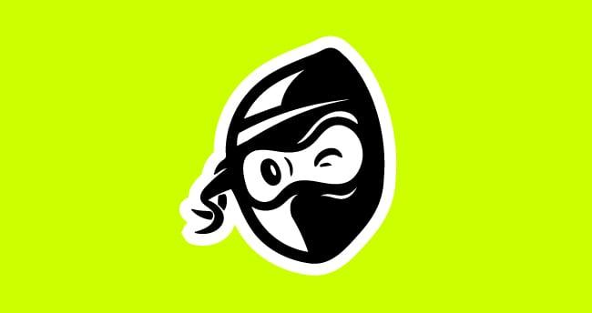 large green Mail Ninja logo