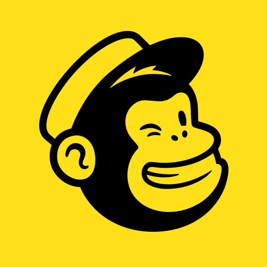 mailchimp training consultancy on site
